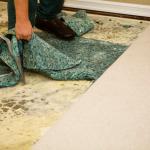 mold testing sandusky, mold inspection sandusky, mold removal sandusky